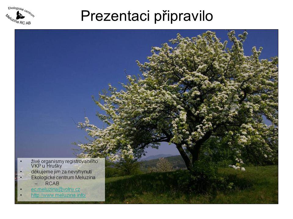 Prezentaci připravilo •živé organismy registrovaného VKP u Hrušky •děkujeme jim za nevyhynutí •Ekologické centrum Meluzína – RCAB •ec.meluzina@volny.c