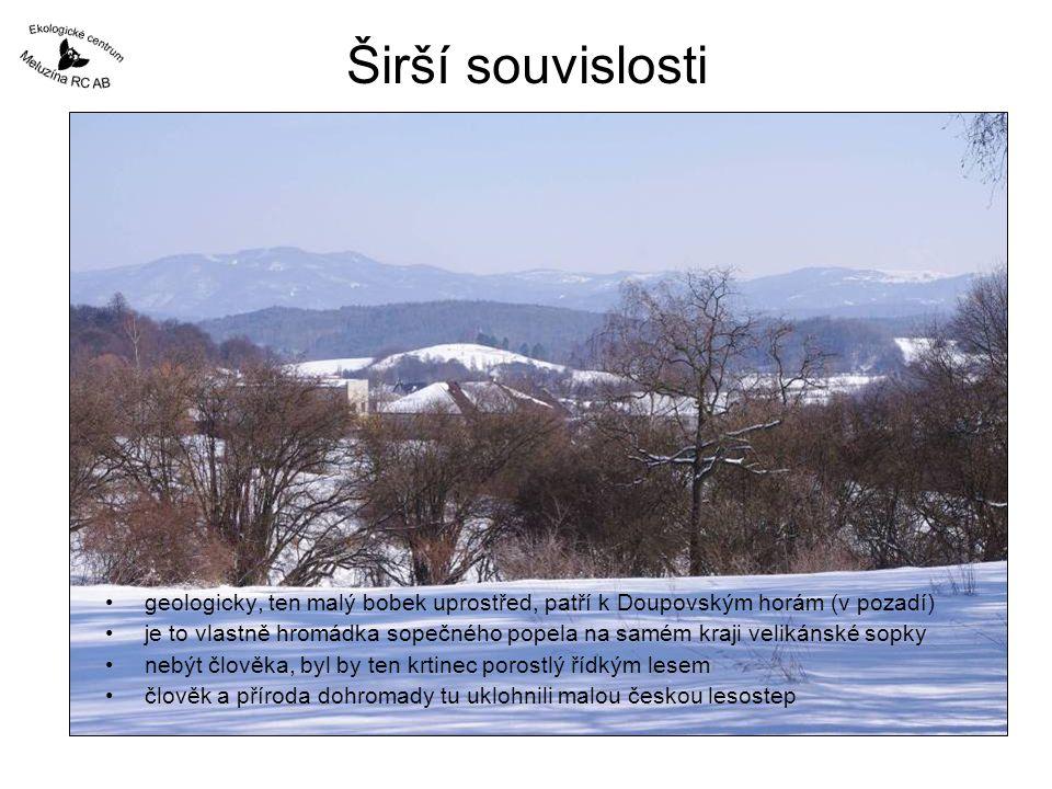 Širší souvislosti •geologicky, ten malý bobek uprostřed, patří k Doupovským horám (v pozadí) •je to vlastně hromádka sopečného popela na samém kraji velikánské sopky •nebýt člověka, byl by ten krtinec porostlý řídkým lesem •člověk a příroda dohromady tu uklohnili malou českou lesostep