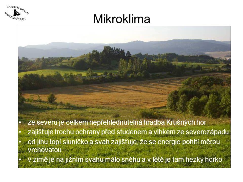 Mikroklima •ze severu je celkem nepřehlédnutelná hradba Krušných hor •zajišťuje trochu ochrany před studenem a vlhkem ze severozápadu •od jihu topí sl