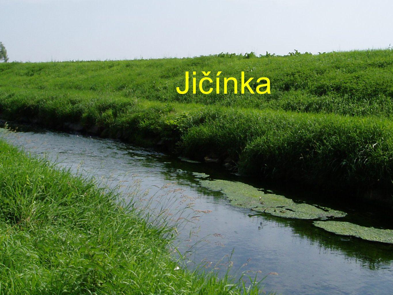 Jičínka