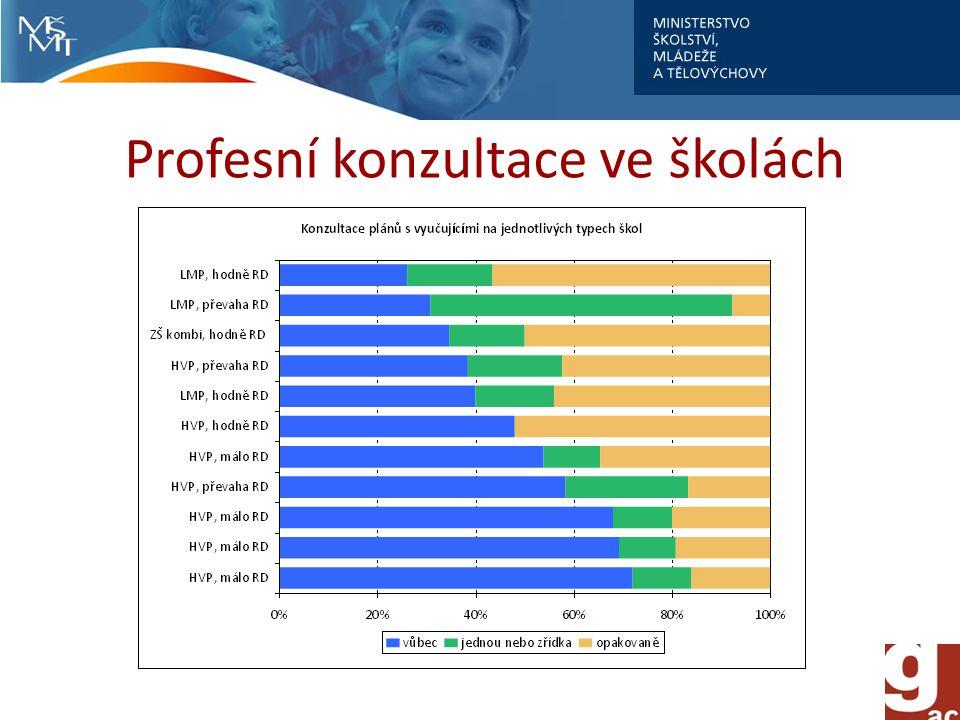 Profesní konzultace ve školách