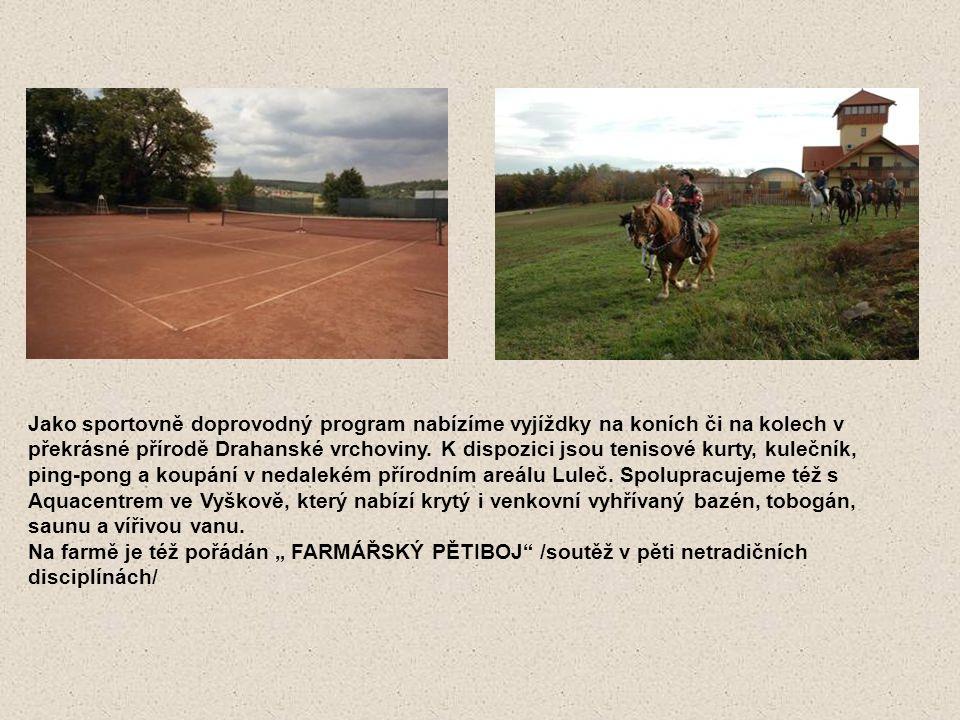 Jako sportovně doprovodný program nabízíme vyjíždky na koních či na kolech v překrásné přírodě Drahanské vrchoviny. K dispozici jsou tenisové kurty, k