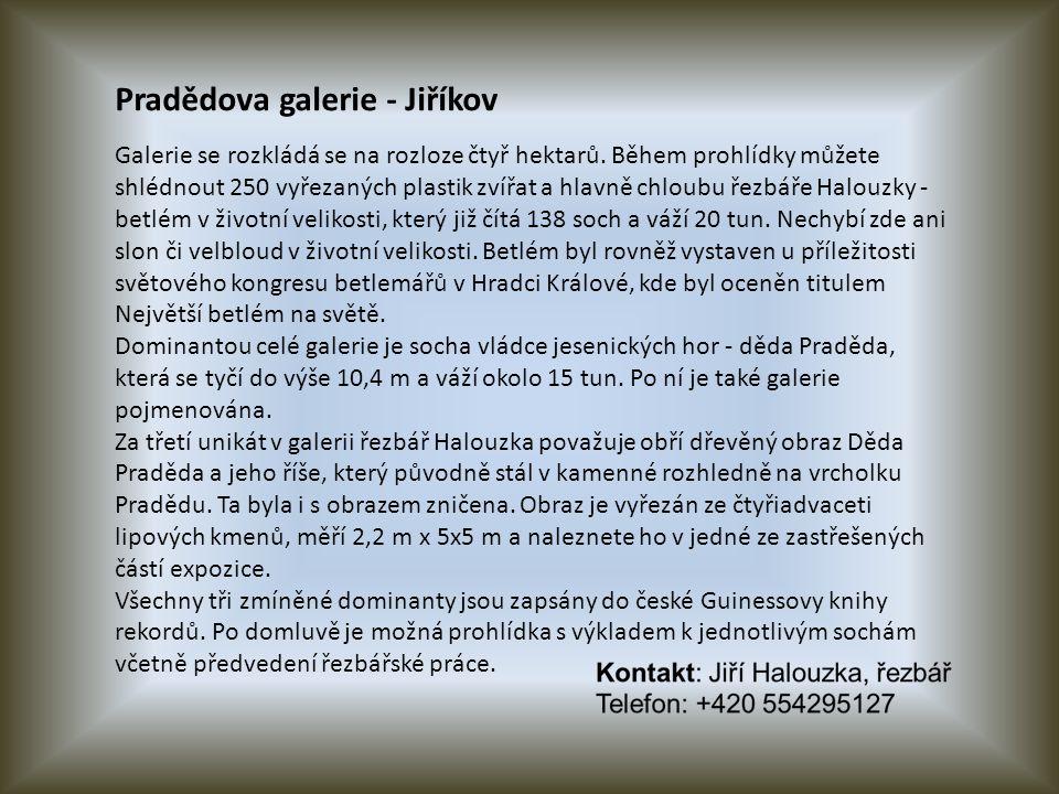 Pradědova galerie - Jiříkov Galerie se rozkládá se na rozloze čtyř hektarů.