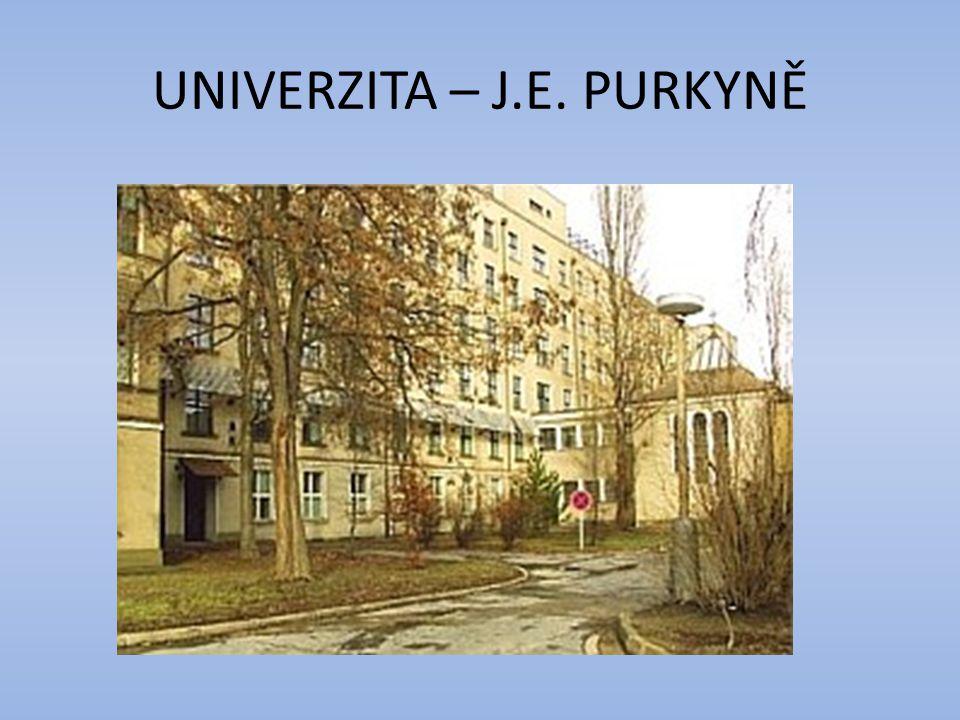UNIVERZITA – J.E. PURKYNĚ