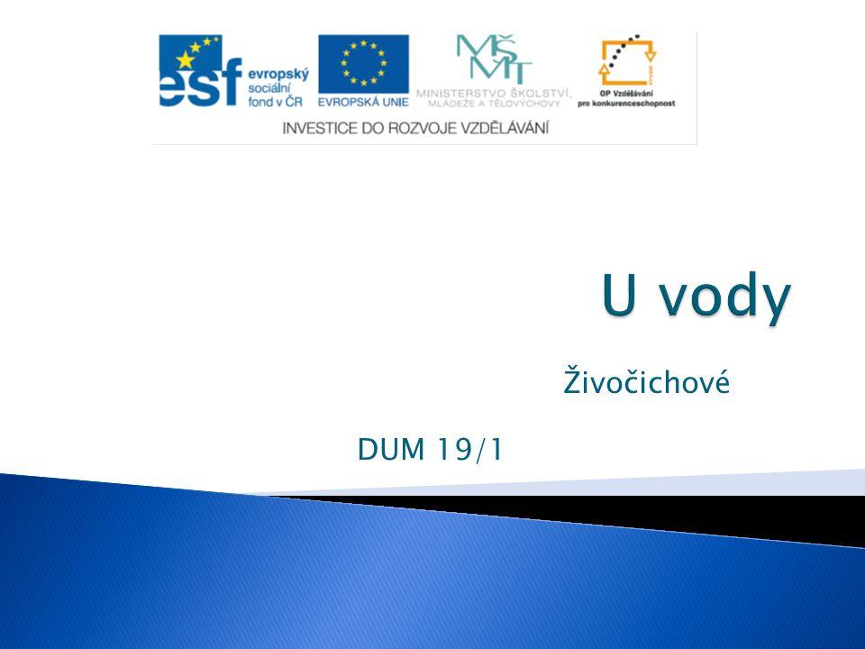 """ Tento výukový materiál byl vytvořen v rámci projektu """" EU-peníze  Autor: Mgr."""