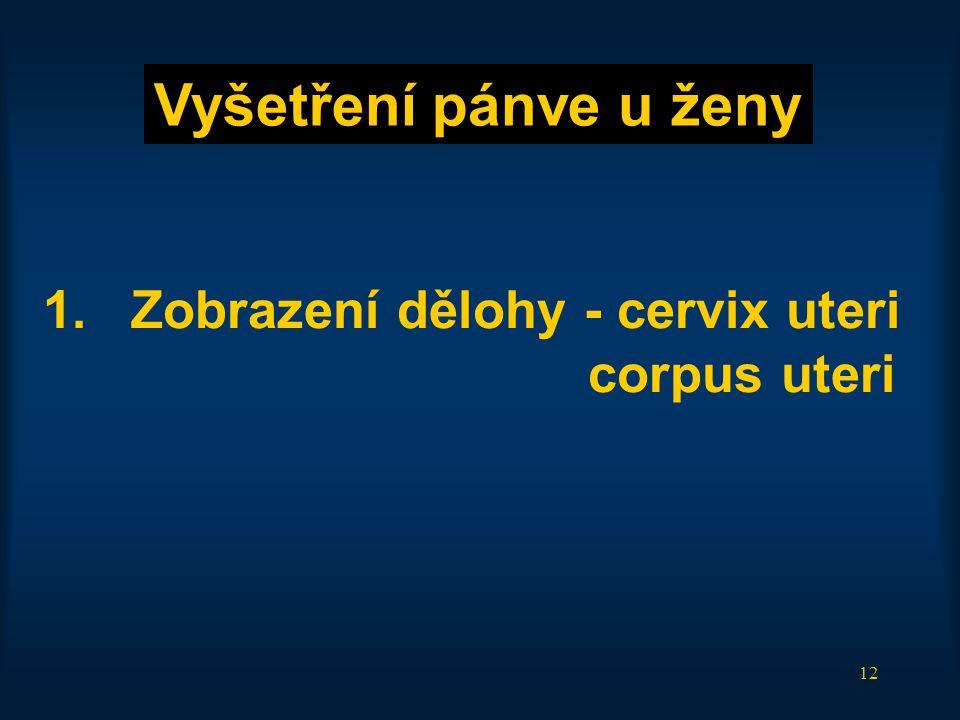 12 1.Zobrazení dělohy - cervix uteri corpus uteri Vyšetření pánve u ženy