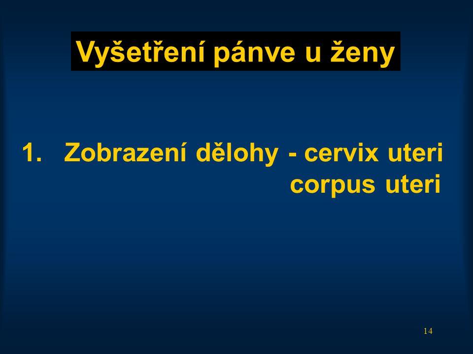14 1.Zobrazení dělohy - cervix uteri corpus uteri Vyšetření pánve u ženy