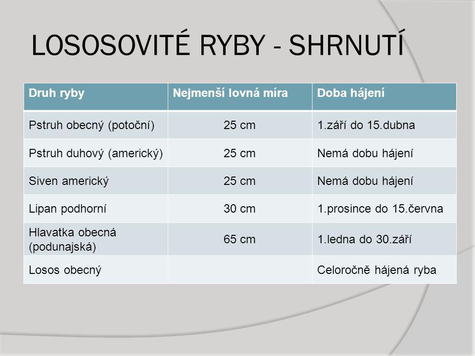 LOSOSOVITÉ RYBY - SHRNUTÍ Druh rybyNejmenší lovná míraDoba hájení Pstruh obecný (potoční)25 cm1.září do 15.dubna Pstruh duhový (americký)25 cmNemá dob