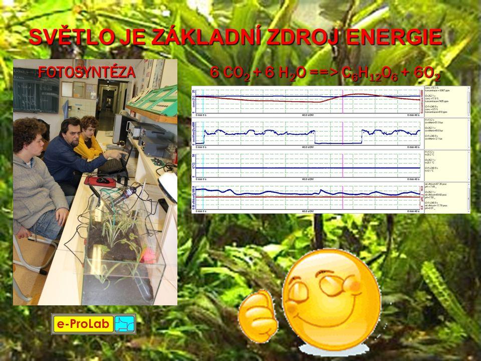 SVĚTLO JE ZÁKLADNÍ ZDROJ ENERGIE 6 CO 2 + 6 H 2 O ==> C 6 H 12 O 6 + 6O 2 FOTOSYNTÉZA
