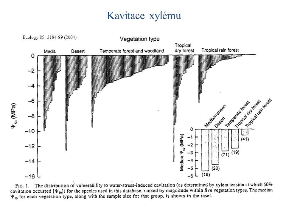 Ecology 85: 2184-99 (2004) Kavitace xylému