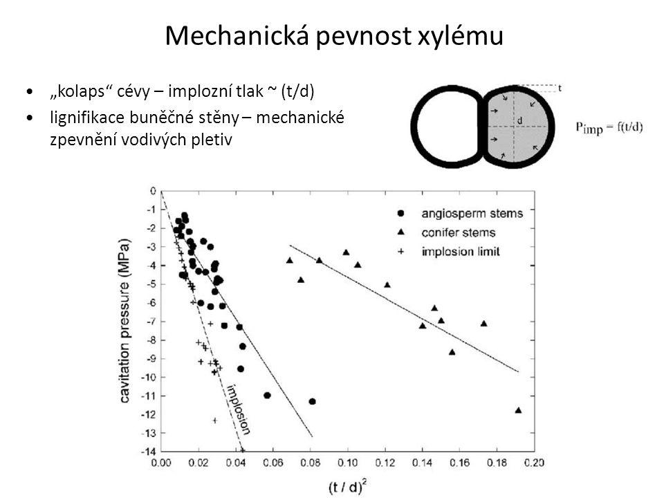 """Mechanická pevnost xylému •""""kolaps"""" cévy – implozní tlak ~ (t/d) •lignifikace buněčné stěny – mechanické zpevnění vodivých pletiv"""
