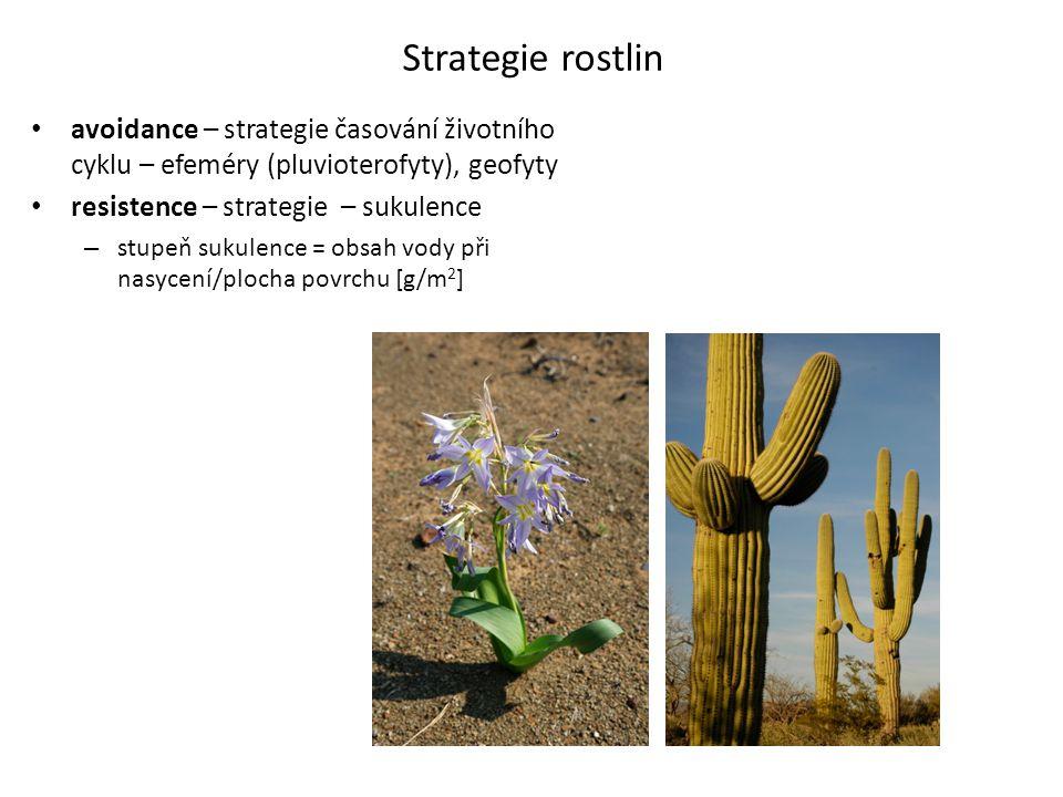 Strategie rostlin • avoidance – strategie časování životního cyklu – efeméry (pluvioterofyty), geofyty • resistence – strategie – sukulence – stupeň s