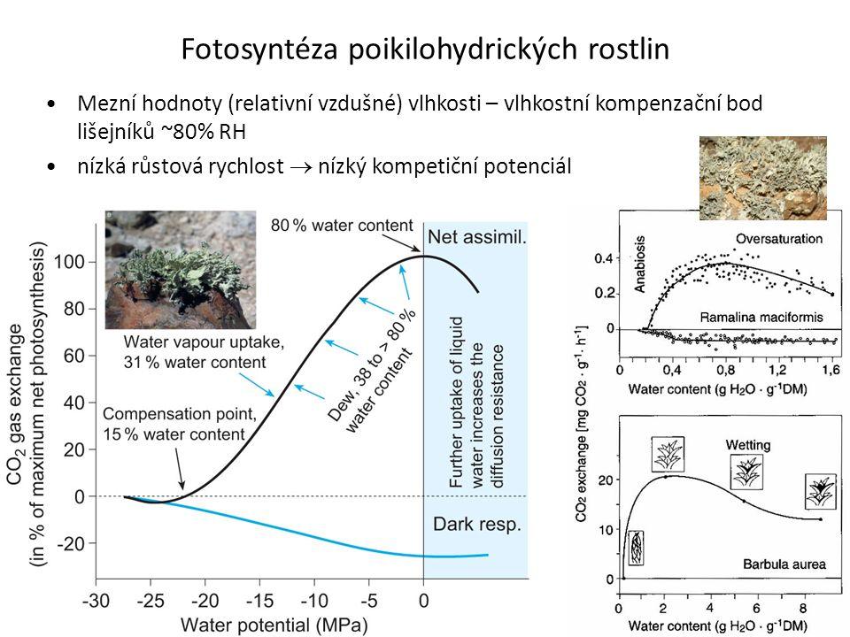 Fotosyntéza poikilohydrických rostlin •Mezní hodnoty (relativní vzdušné) vlhkosti – vlhkostní kompenzační bod lišejníků ~80% RH •nízká růstová rychlos