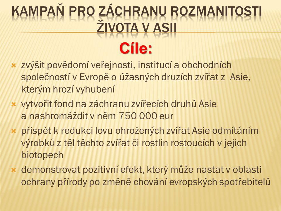  Wikipedia.cz  Google.com