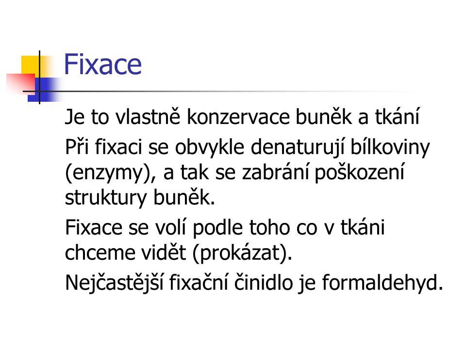 Fixace Je to vlastně konzervace buněk a tkání Při fixaci se obvykle denaturují bílkoviny (enzymy), a tak se zabrání poškození struktury buněk.