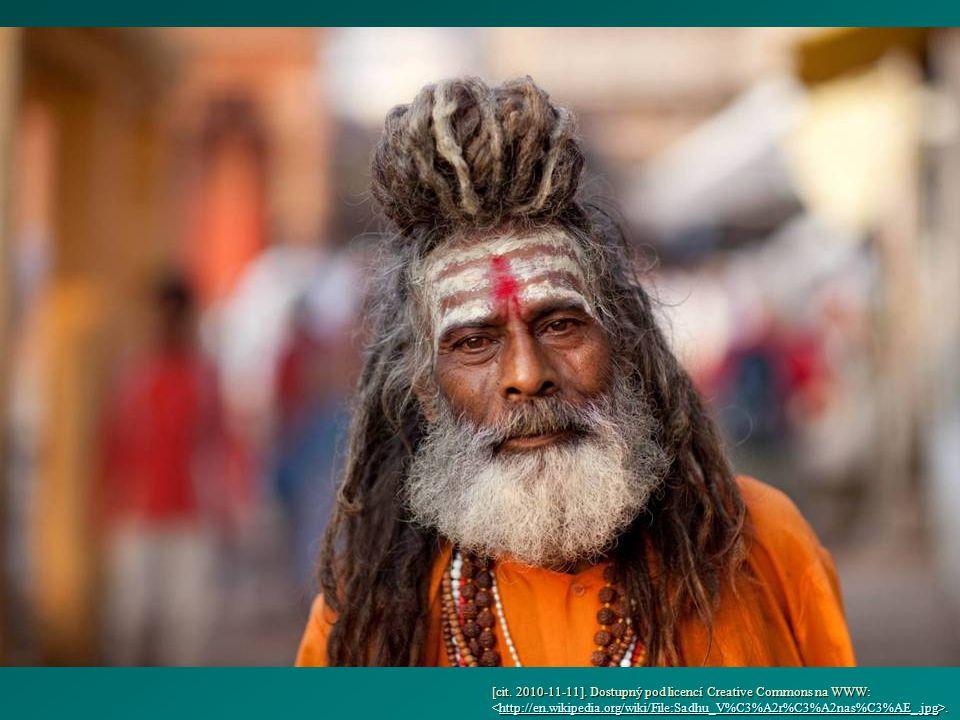 [cit. 2010-11-11]. Dostupný pod licencí Creative Commons na WWW:..http://en.wikipedia.org/wiki/File:Sadhu_V%C3%A2r%C3%A2nas%C3%AE_.jpg