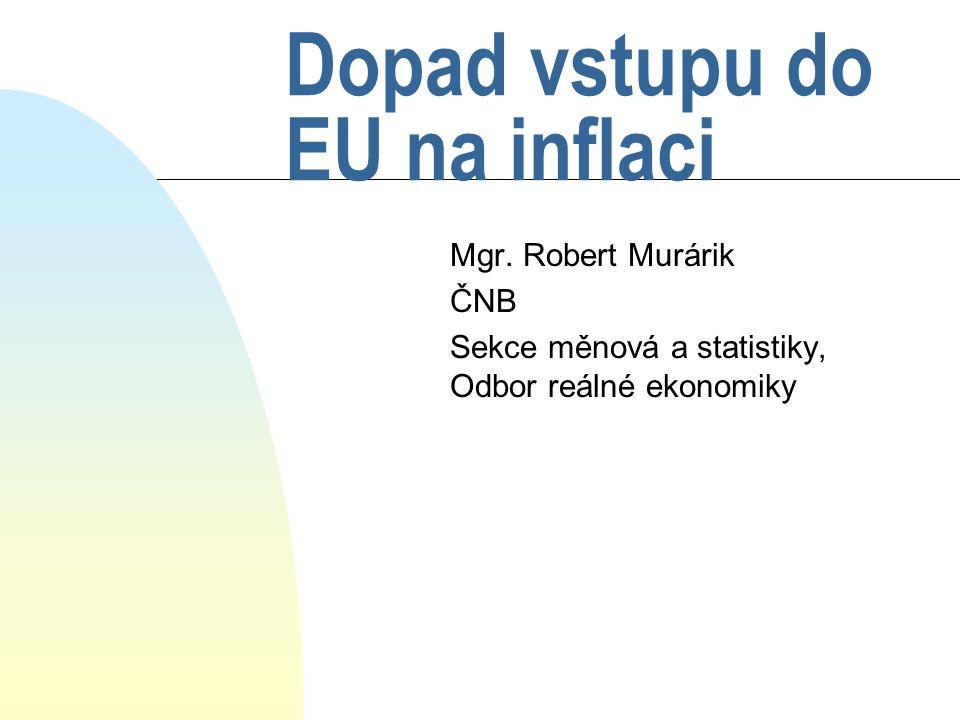 Dopad vstupu do EU na inflaci Mgr.