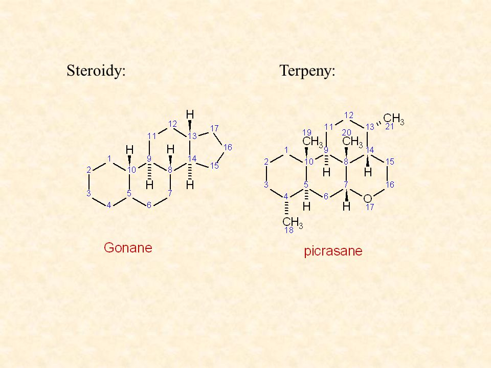 Steroidy:Terpeny: