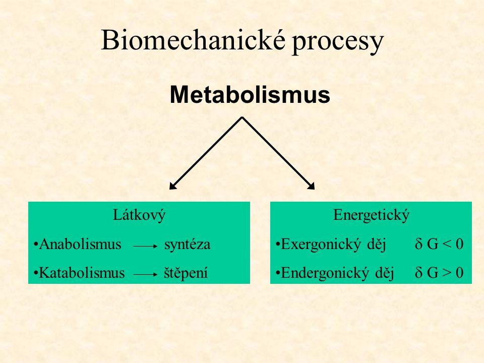 Biomechanické procesy Metabolismus Látkový •Anabolismus syntéza •Katabolismus štěpení Energetický •Exergonický děj  G < 0 •Endergonický děj  G > 0