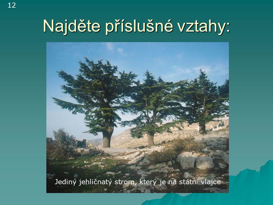 Najděte příslušné vztahy: Jediný jehličnatý strom, který je na státní vlajce 12
