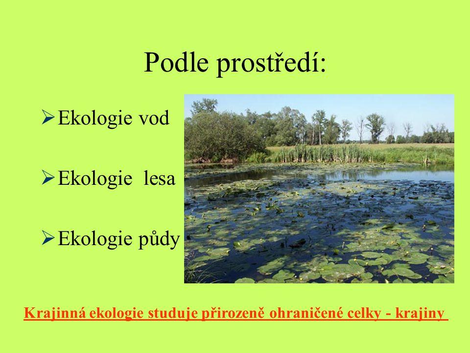 Podle prostředí:  Ekologie vod  Ekologie lesa  Ekologie půdy Krajinná ekologie studuje přirozeně ohraničené celky - krajiny