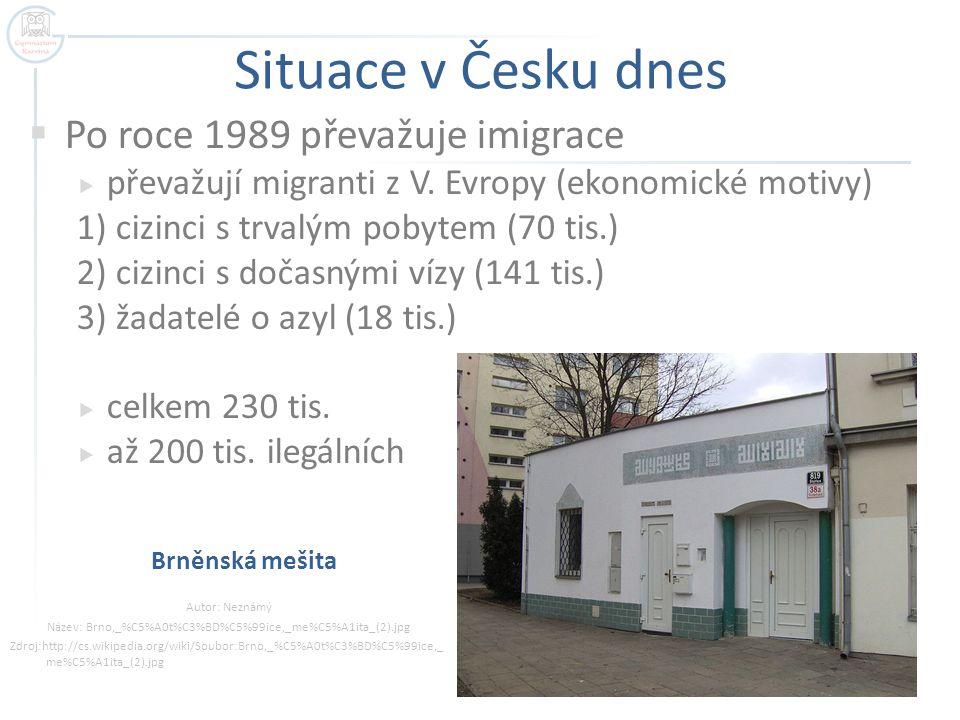 Situace v Česku dnes  Po roce 1989 převažuje imigrace  převažují migranti z V. Evropy (ekonomické motivy) 1) cizinci s trvalým pobytem (70 tis.) 2)