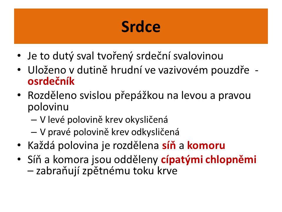 www.ostrava-educanet.cz