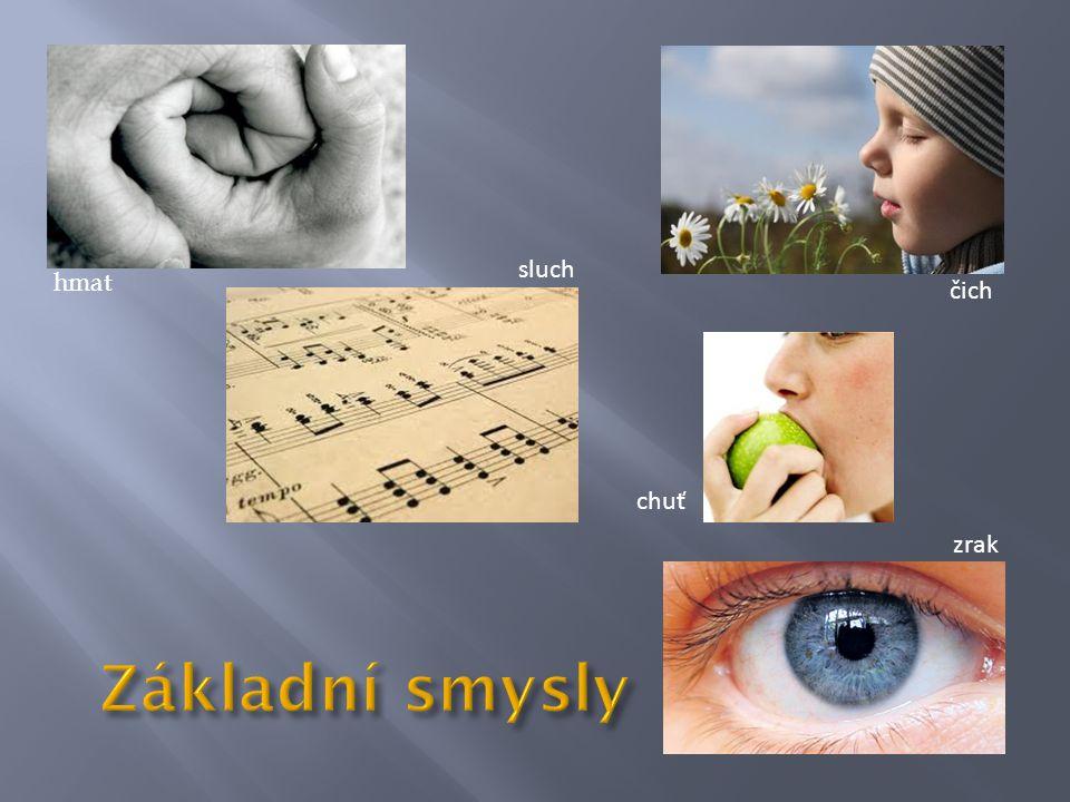 • Tiskací písmena psaná do dlaně • Tato forma dorozumívání je využívaná hluchoslepými se ztrátou zraku a sluchu v pozdějším věku.
