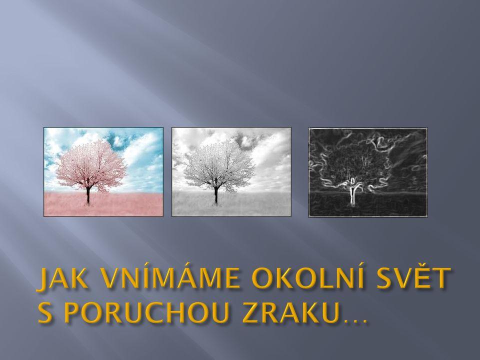  Rolnička, Soběslav  Fokus, Tábor  Klíček, Zaluží  Kaňka, Tábor  Apla, Tábor