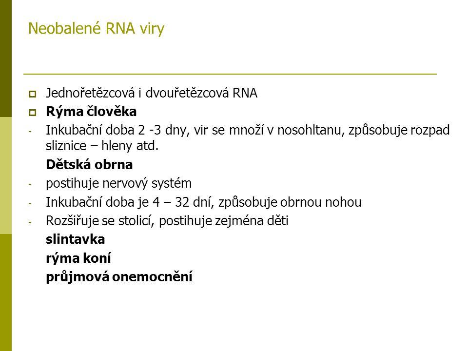 Neobalené RNA viry  Jednořetězcová i dvouřetězcová RNA  Rýma člověka - Inkubační doba 2 -3 dny, vir se množí v nosohltanu, způsobuje rozpad sliznice