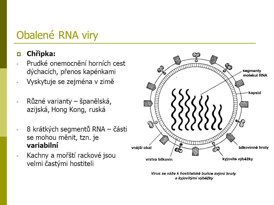 Obalené RNA viry  Chřipka: - Prudké onemocnění horních cest dýchacích, přenos kapénkami - Vyskytuje se zejména v zimě - Různé varianty – španělská, a