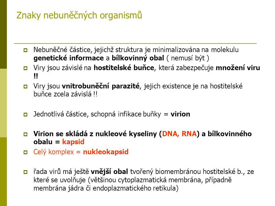 Znaky nebuněčných organismů  Nebuněčné částice, jejichž struktura je minimalizována na molekulu genetické informace a bílkovinný obal ( nemusí být )