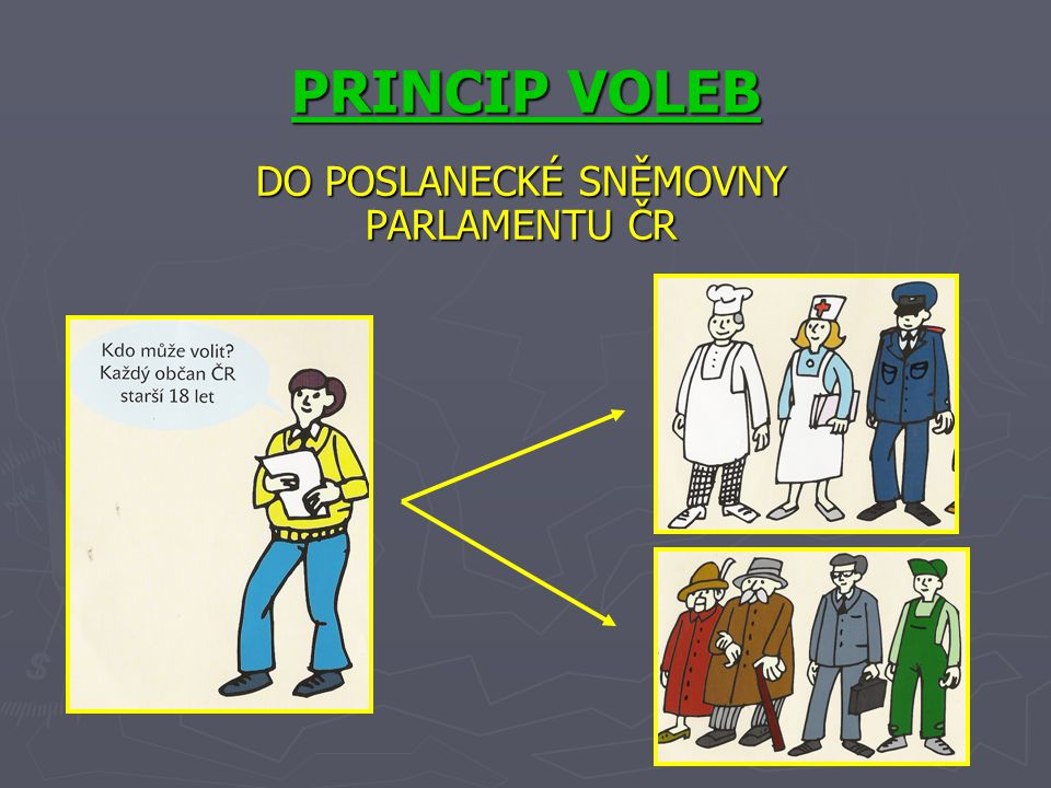 PRINCIP VOLEB DO POSLANECKÉ SNĚMOVNY PARLAMENTU ČR