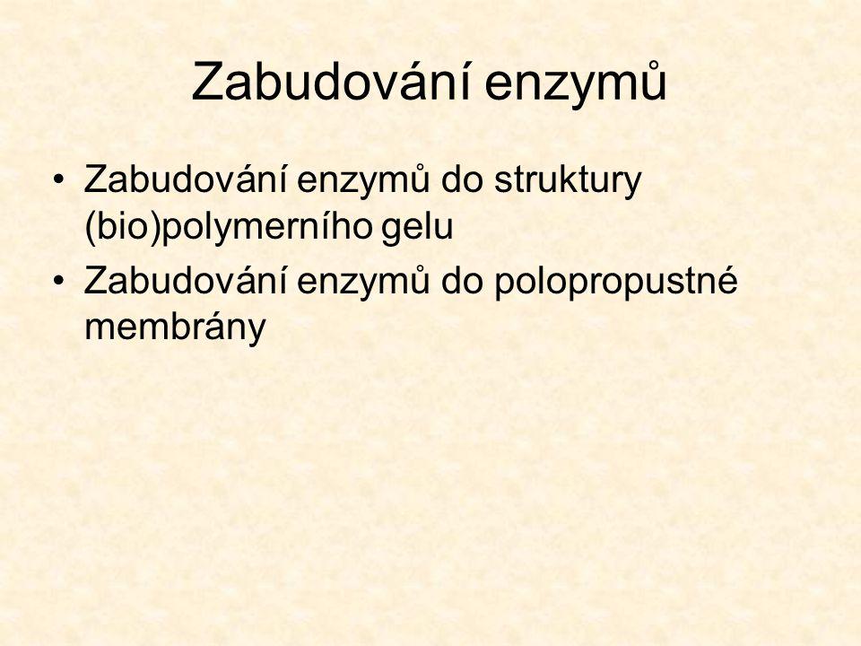 Zabudování enzymů •Zabudování enzymů do struktury (bio)polymerního gelu •Zabudování enzymů do polopropustné membrány
