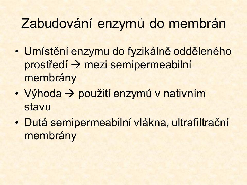 Zabudování enzymů do membrán •Umístění enzymu do fyzikálně odděleného prostředí  mezi semipermeabilní membrány •Výhoda  použití enzymů v nativním stavu •Dutá semipermeabilní vlákna, ultrafiltrační membrány