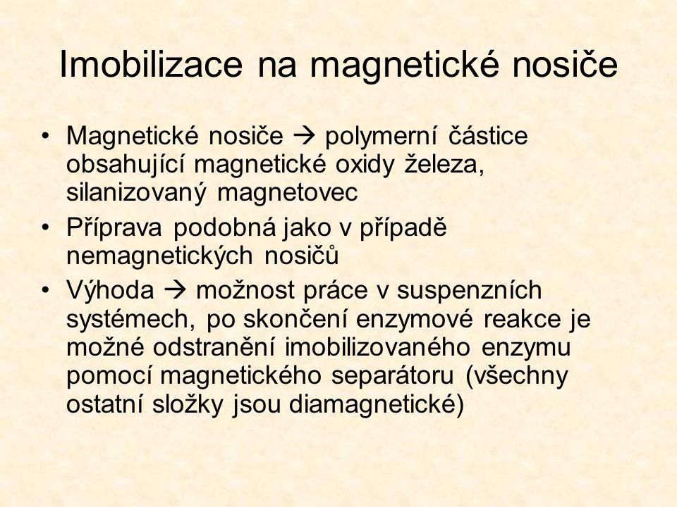 Imobilizace na magnetické nosiče •Magnetické nosiče  polymerní částice obsahující magnetické oxidy železa, silanizovaný magnetovec •Příprava podobná jako v případě nemagnetických nosičů •Výhoda  možnost práce v suspenzních systémech, po skončení enzymové reakce je možné odstranění imobilizovaného enzymu pomocí magnetického separátoru (všechny ostatní složky jsou diamagnetické)