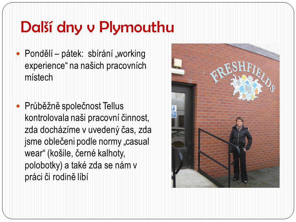 """Další dny v Plymouthu  Pondělí – pátek: sbírání """"working experience"""" na našich pracovních místech  Průběžně společnost Tellus kontrolovala naši prac"""