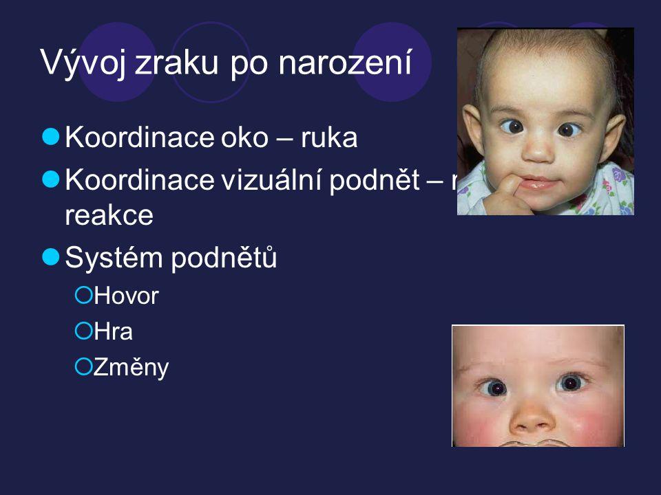 Vývoj zraku po narození  Koordinace oko – ruka  Koordinace vizuální podnět – motorická reakce  Systém podnětů  Hovor  Hra  Změny