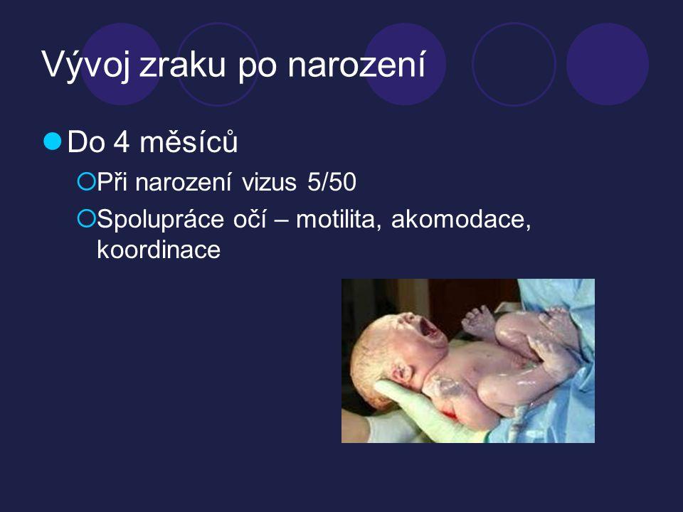 Vývoj zraku po narození  Do 4 měsíců  Při narození vizus 5/50  Spolupráce očí – motilita, akomodace, koordinace