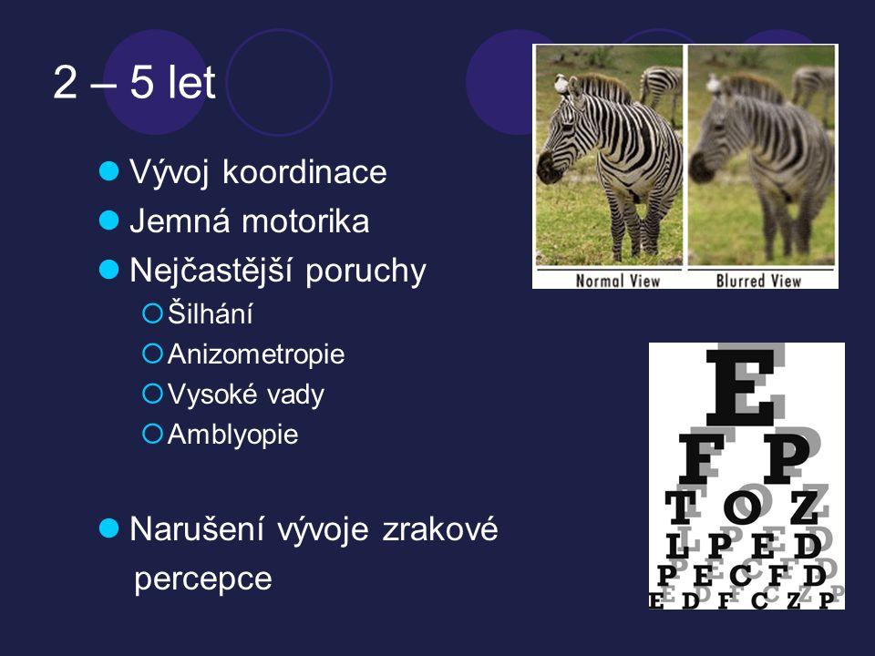 2 – 5 let  Vývoj koordinace  Jemná motorika  Nejčastější poruchy  Šilhání  Anizometropie  Vysoké vady  Amblyopie  Narušení vývoje zrakové percepce