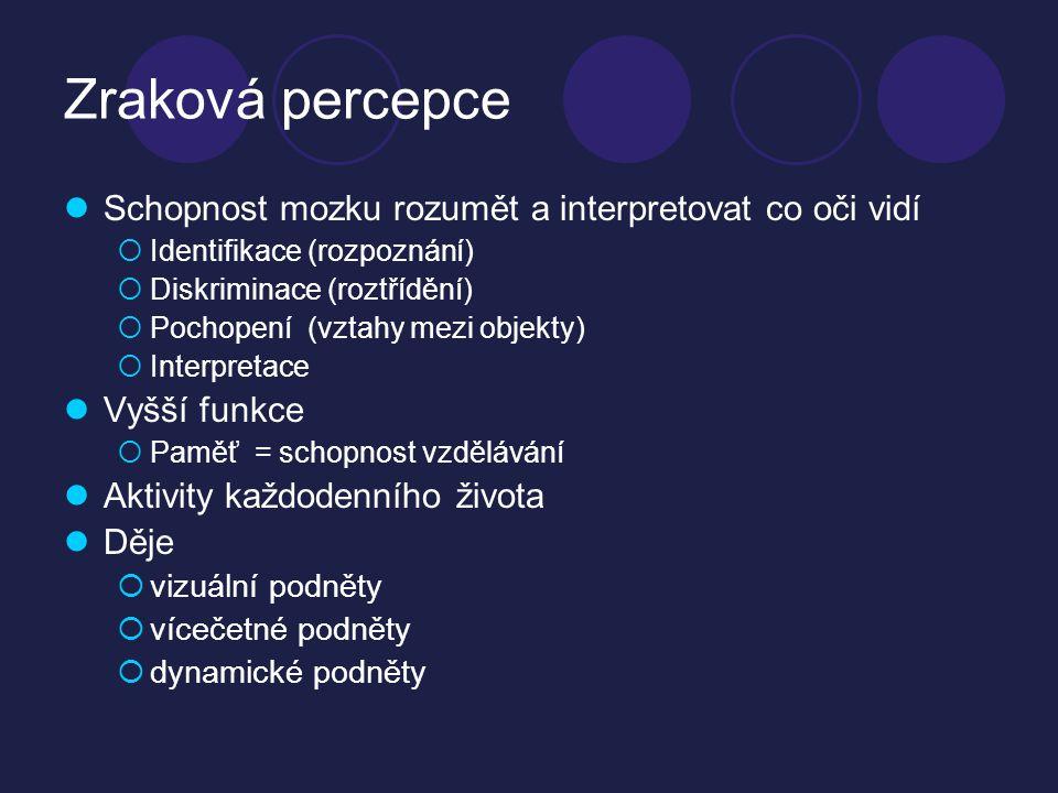 Osobnostní vývoj z hlediska zraku  Porozumění – interpretace  Paměť  V 5 letech IQ ≥ 84  Využití dosaženého
