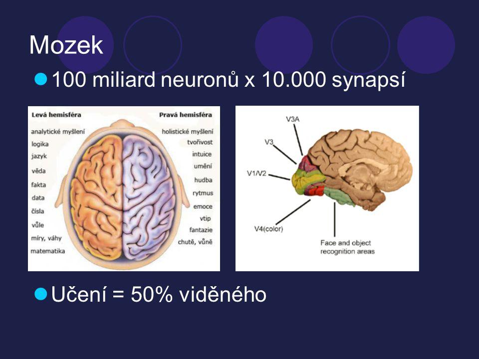 Paměť  Schopnost vyvolat minulé děje  Paměť smyslová  milisekundy,počáteční vnímání podnětů  Procedurální paměť  pocity, postupy, vliv prostředí  Krátkodobá  primární paměť - 10-15sec, uložit a znovu vybavit informaci  Dlouhodobá  uložené hluboko dlouhodobě, pevně, forma - vzpomínky, obrazy, koncepty, informace upevněná, vychází z krátkodobé paměti  Paměťové systémy  sémantická paměť (slova)  útržková paměť (detaily situací)  Logická  mechanická  Dispozice vrozená  Výcvik