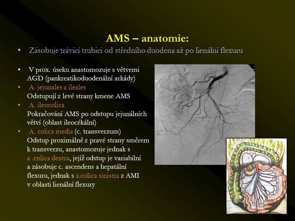 AMS – anatomie: •Zásobuje trávicí trubici od středního duodena až po lienální flexuru •V prox. úseku anastomozuje s větvemi AGD (pankreatikoduodenální