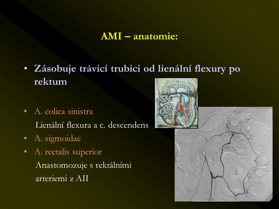 AMI – anatomie: •Zásobuje trávicí trubici od lienální flexury po rektum •A. colica sinistra Lienální flexura a c. descendens •A. sigmoidae •A. rectali