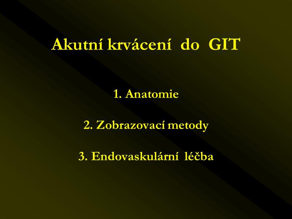 Akutní krvácení do GIT 1. Anatomie 2. Zobrazovací metody 3. Endovaskulární léčba