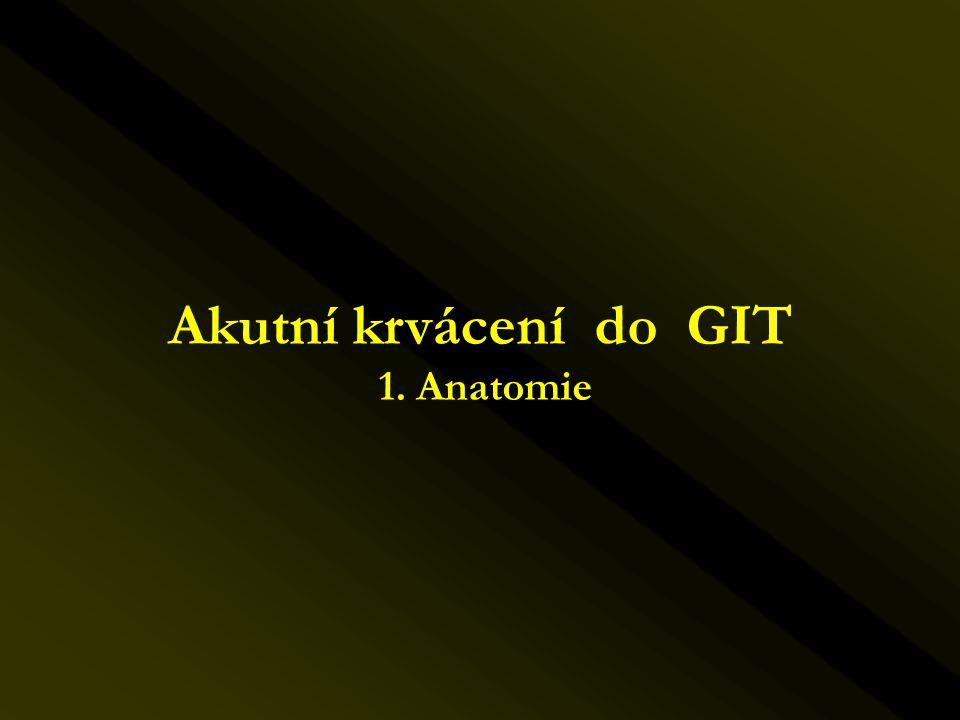 Akutní krvácení do GIT 1. Anatomie