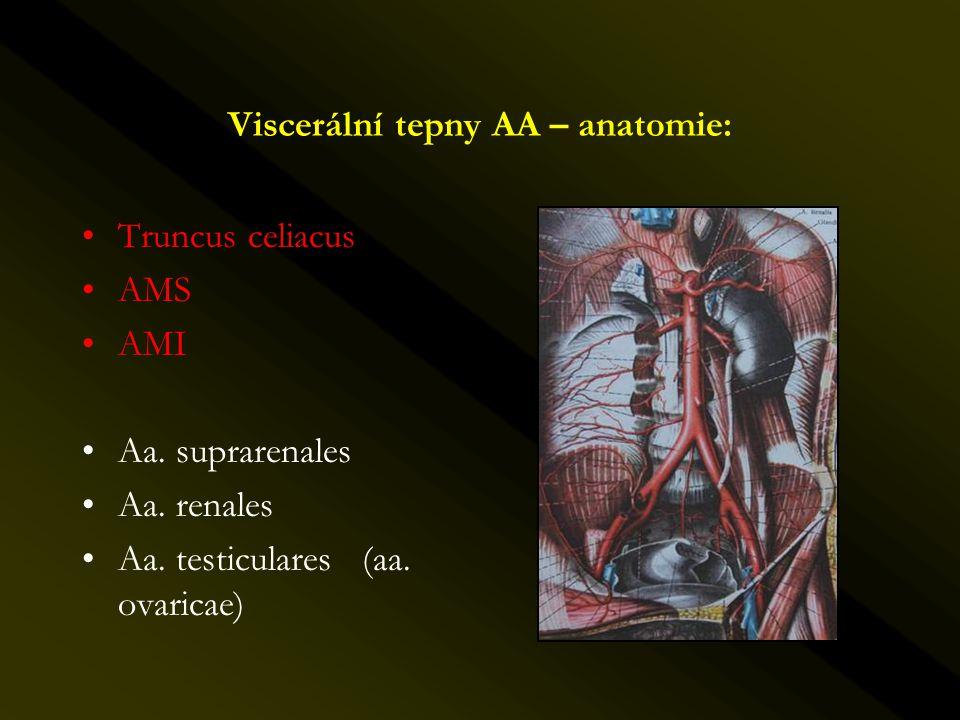 Viscerální tepny AA – anatomie: •Truncus celiacus •AMS •AMI •Aa. suprarenales •Aa. renales •Aa. testiculares (aa. ovaricae)