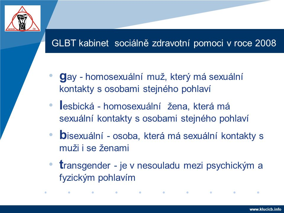 Company LOGO www.company.com GLBT kabinet sociálně zdravotní pomoci v roce 2008 •g ay - homosexuální muž, který má sexuální kontakty s osobami stejnéh