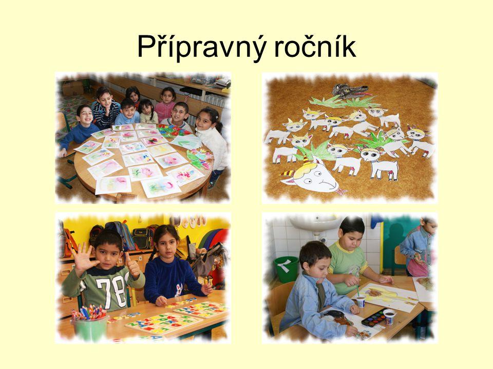 Závěrečné hodnocení školního roku 2008/2009 •Velký přínos pro přípravný ročník je asistentka pedagoga.