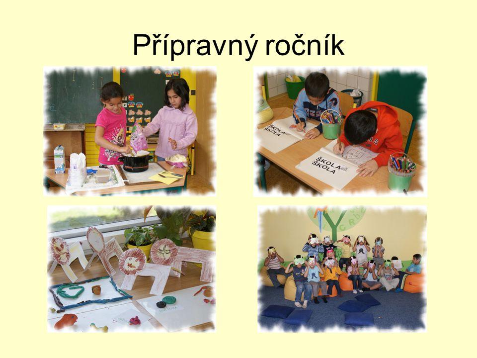 Závěrečné hodnocení školního roku 2008/2009 •Pokrok nastal po všech stránkách.